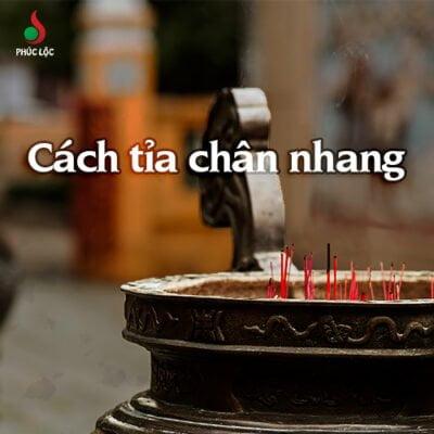 cach-tai-chan-nhang